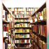 Bošnjačka usmena epika: Česte knjige za knjigama hode
