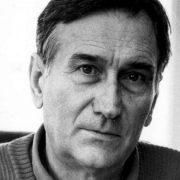 Alija Isaković – Bošnjaci