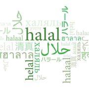 Koji su prema Halal Timesu glavni izazovi sa kojima se susreću mlada halal preduzeća širom svijeta